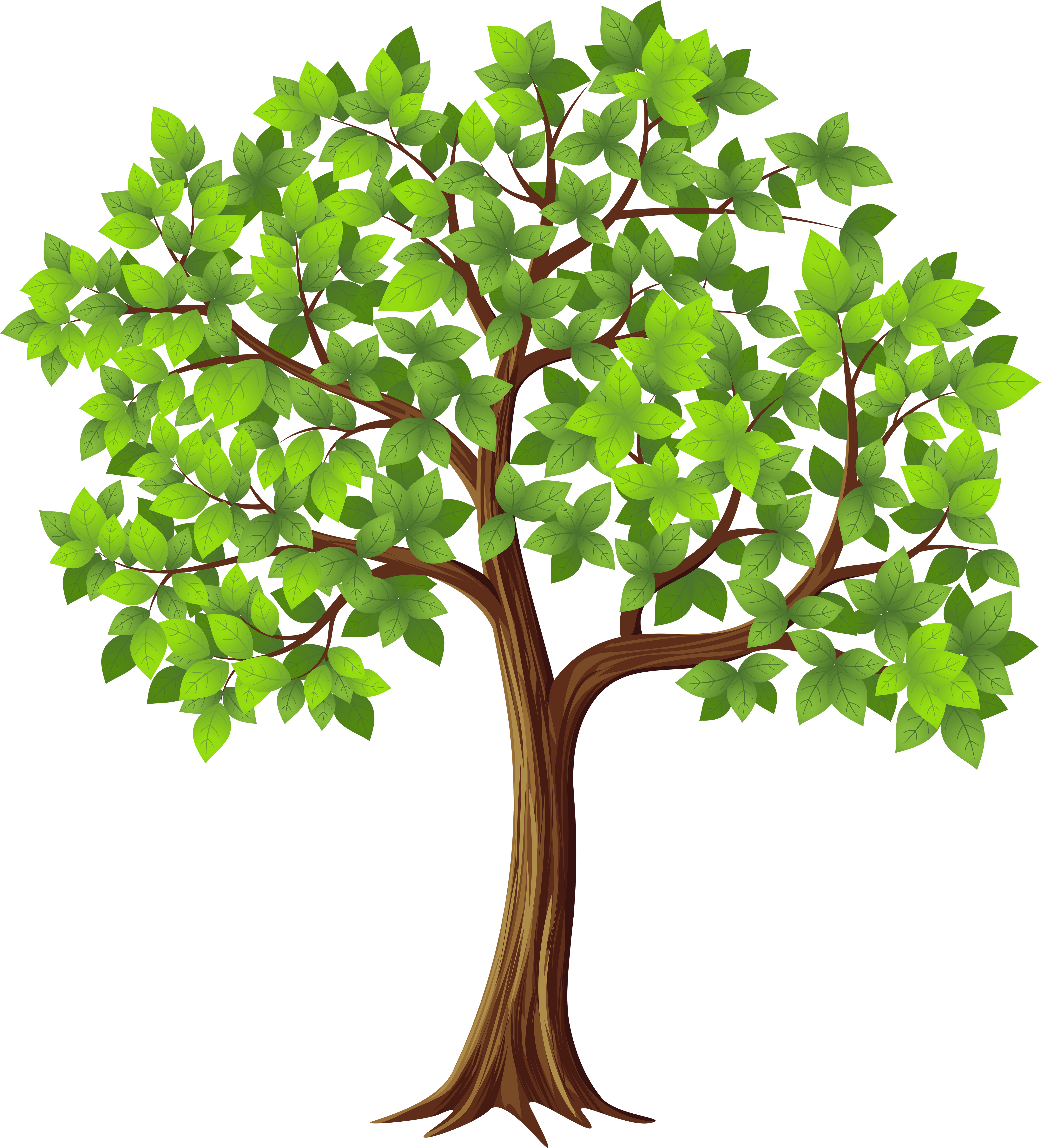 Transparent Tree Cliparts Free Download Clip Art - Fig ...