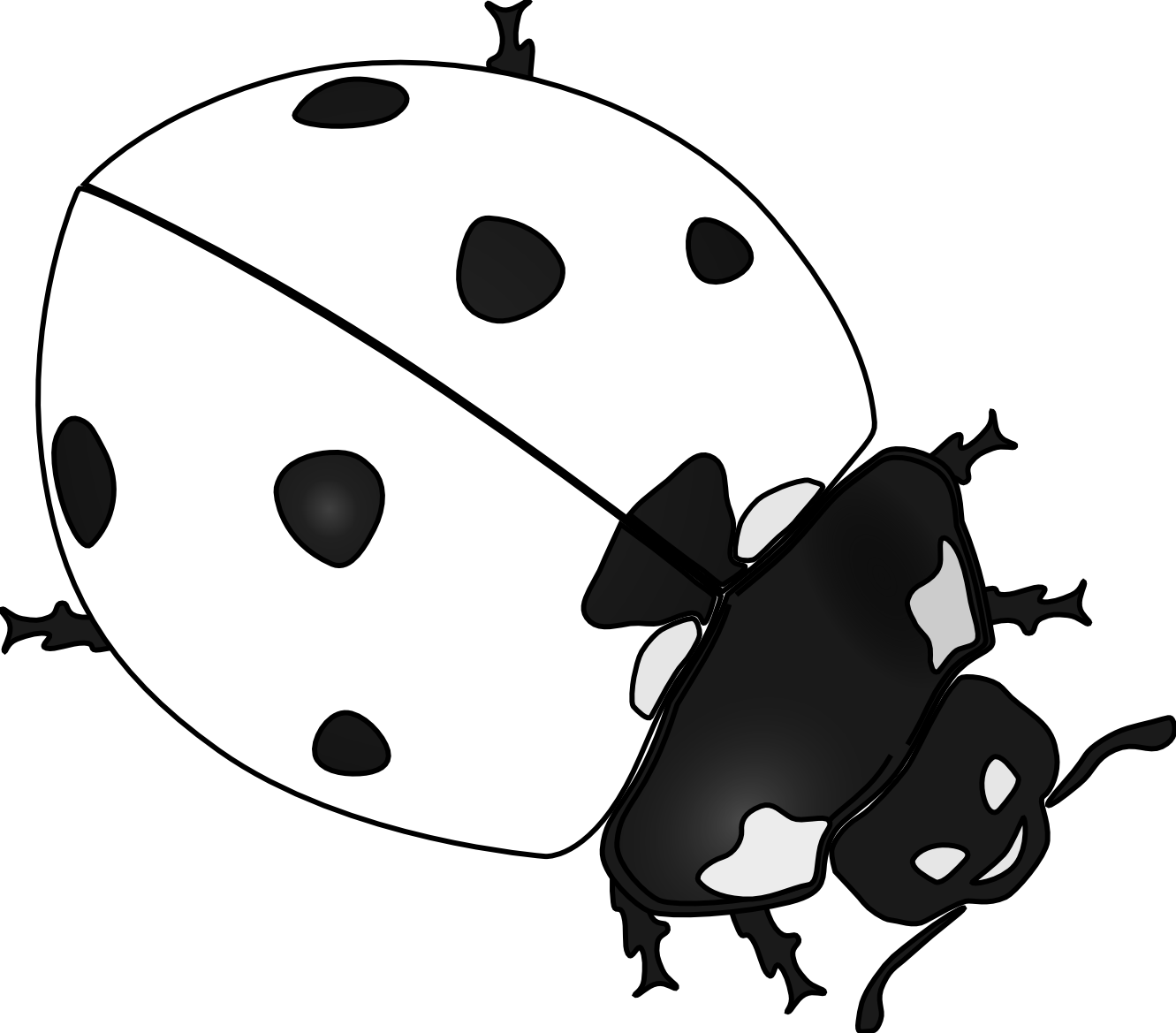 - Free - Free Ladybug Clipart Black And White - Png Download - Full