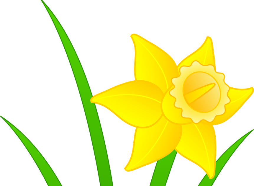Daffodil Clip Art, PNG, 4200x1283px, I Wandered Lonely As A Cloud, American  Daffodil Society, Commodity, Cut