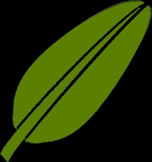 green tea png 29 buy clip art logo daun pisang png transparent png full size clipart 1391068 pinclipart logo daun pisang png transparent png