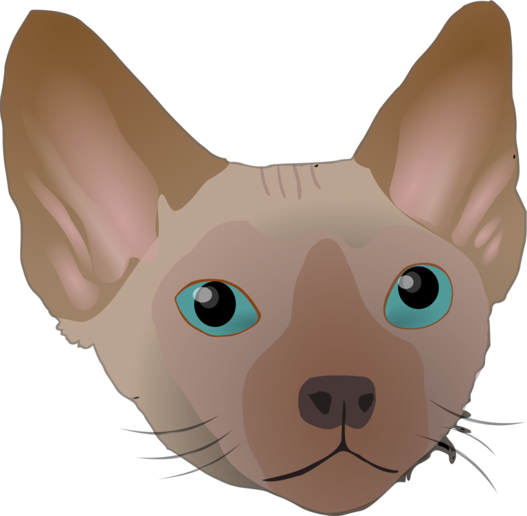 all photo png clipart kucing sphynx vector transparent png full size clipart 1417425 pinclipart kucing sphynx vector transparent png