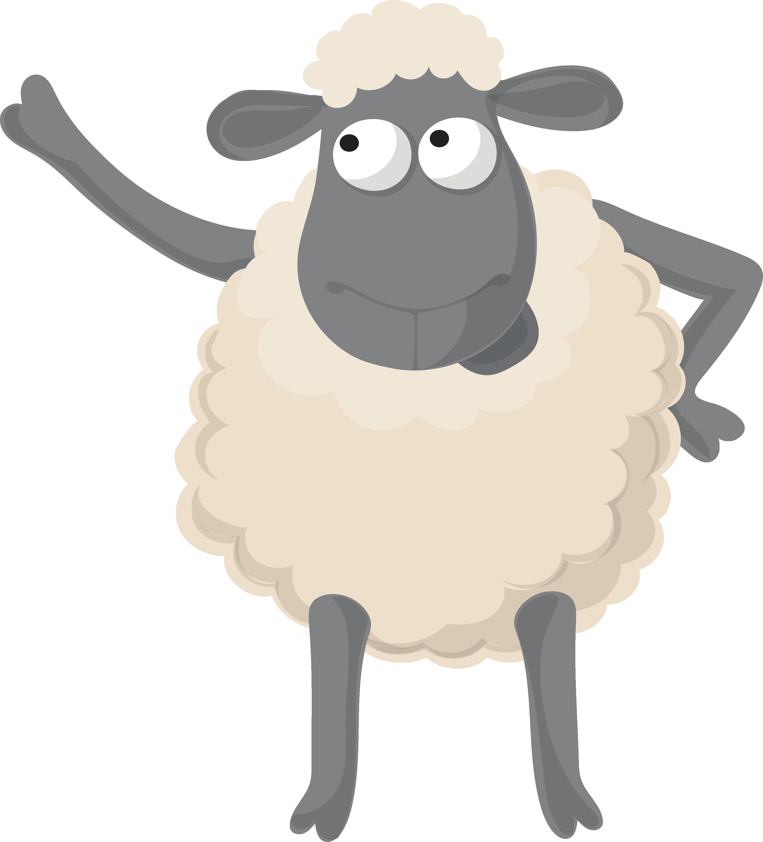 Смешные рисунки овечки