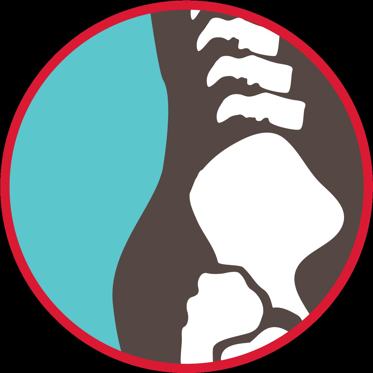 Free Bone Cliparts Borders, Download Free Clip Art, Free Clip Art on Clipart  Library