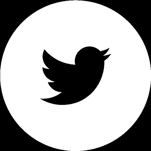 Youtube Logo Twitter Logo Linkedin Logo Twitter White Icon Png