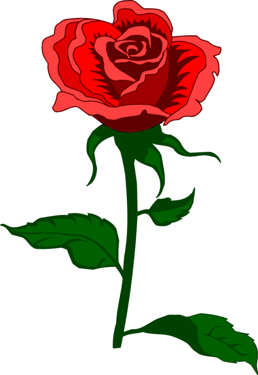 Paling Populer 11 Bunga Mawar Kartun Png Gambar Bunga Indah