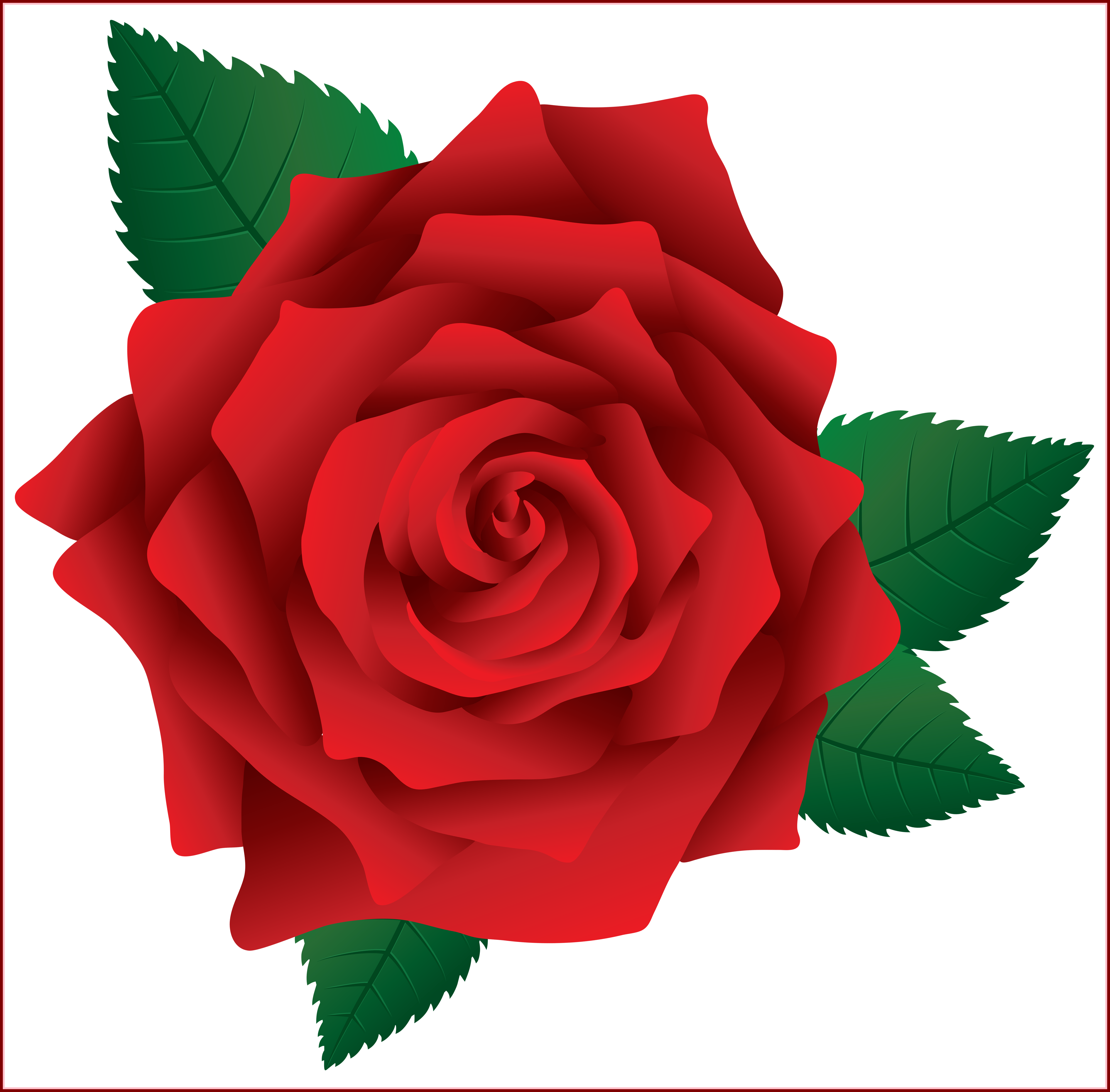 Incredible Clipart And Rose Pict For Red Flower Ideas Rose Png