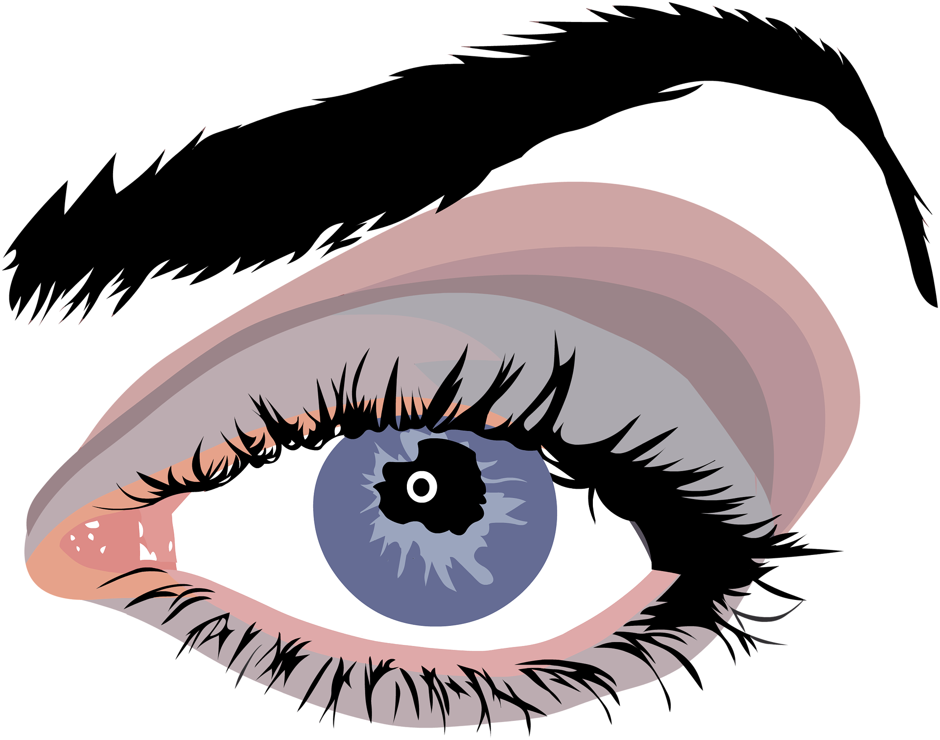 Vector Free Stock Eyelash Clipart False Eye Download