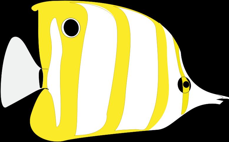 206 2066666 gambar ikan hias kartun clipart