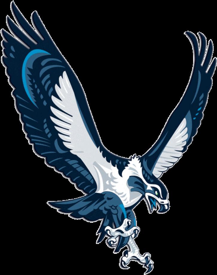 Seattle Seahawks Iron On Transfers For Jerseys - Seattle ...