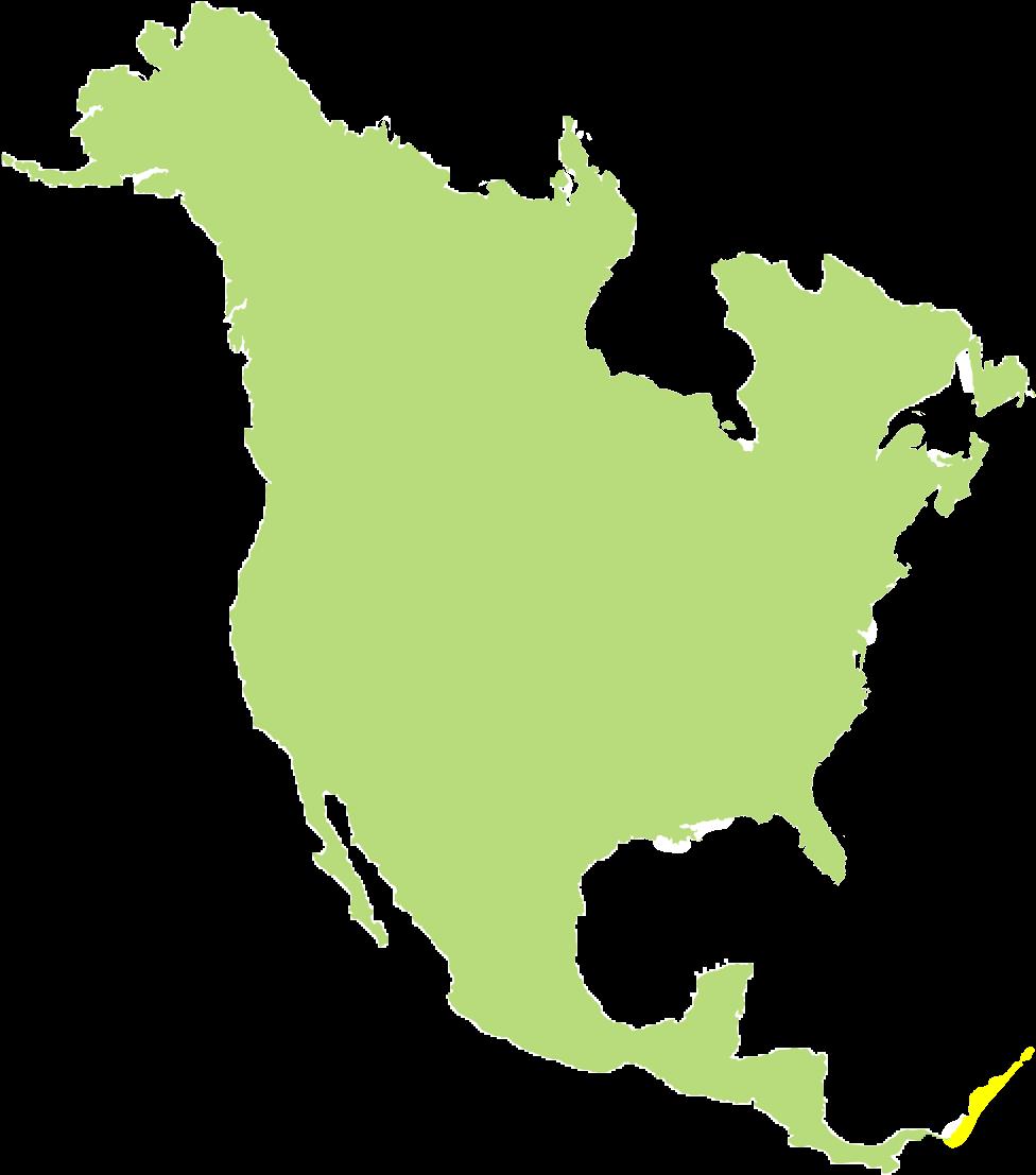 тот картинки материков земли по отдельности северная америка выставить голени прямиком
