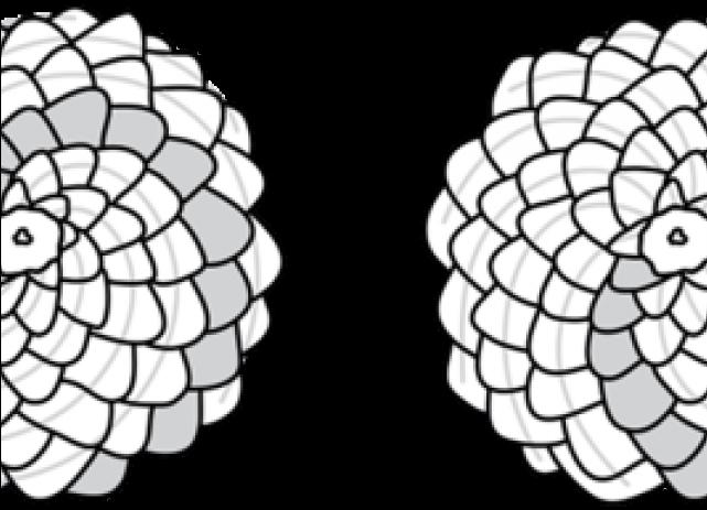 Pine Cone Clip Art Black and White