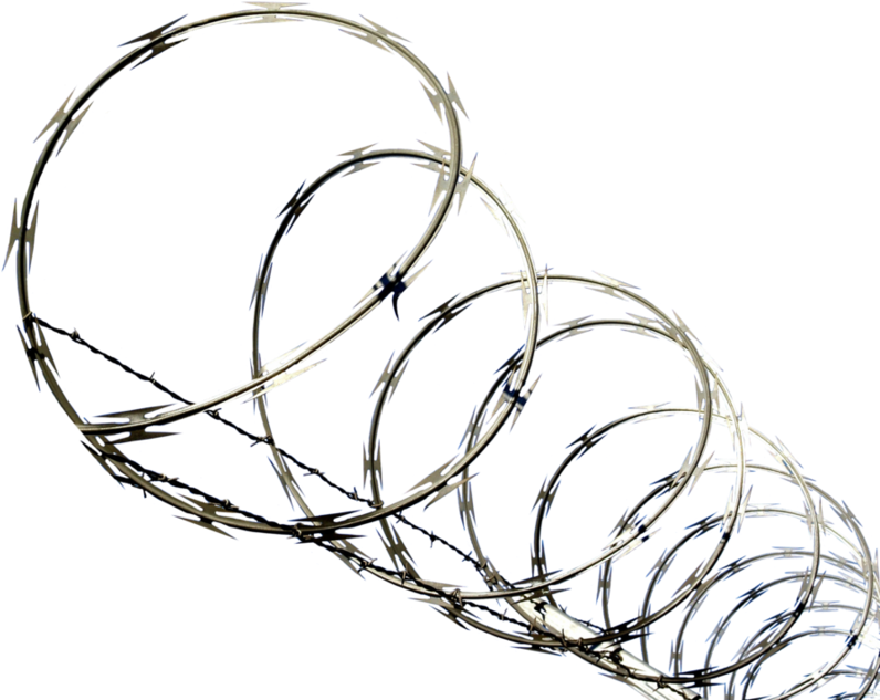 Barbed Wire Clipart Concertina Wire - Png Download - Full ...