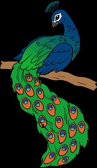 Peacock Cartoon Royalty Free Cliparts, Vectors, And Stock Illustration.  Image 30338534.
