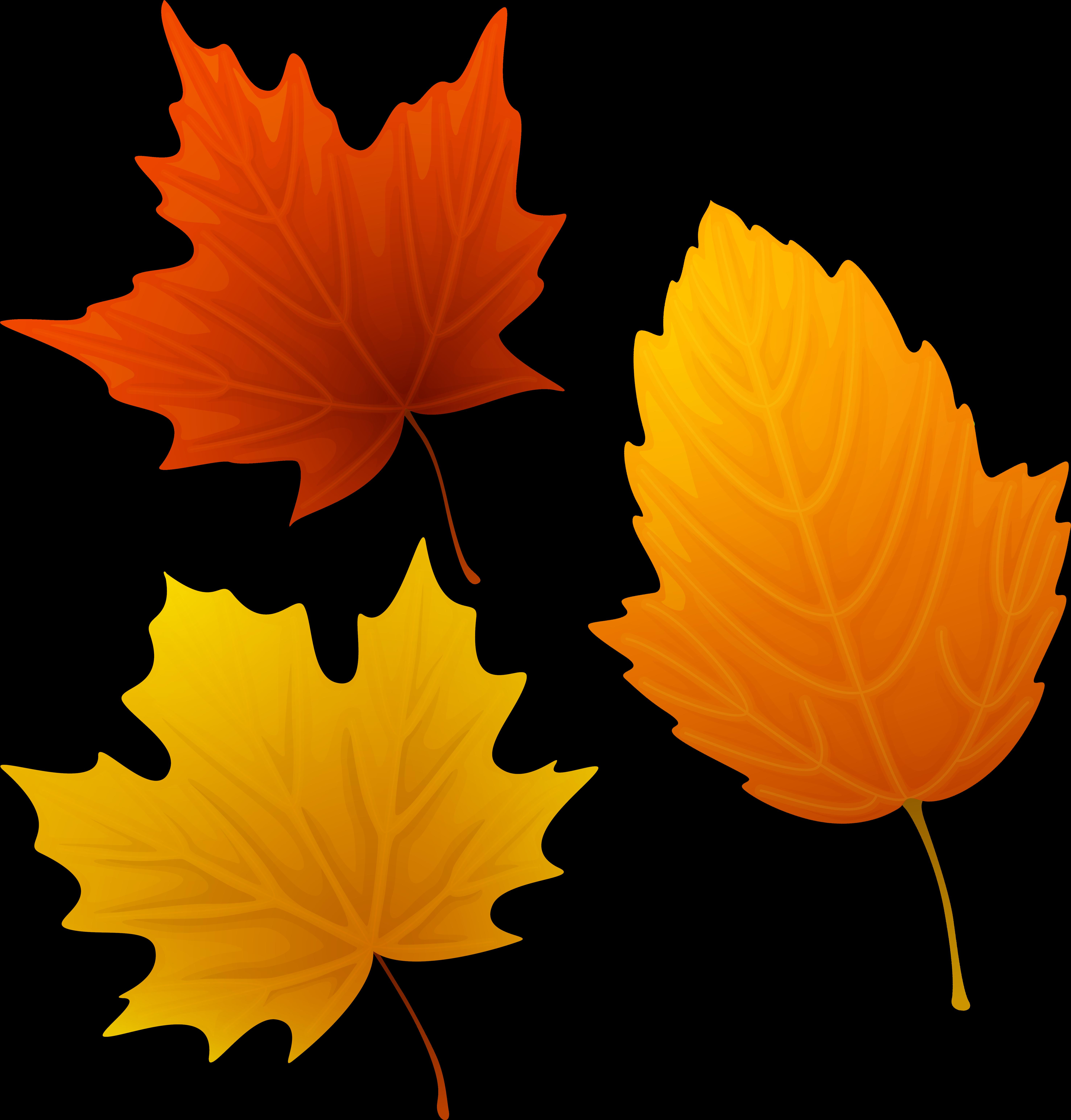 Поздравление, картинки осенних листьев для вырезания цветные