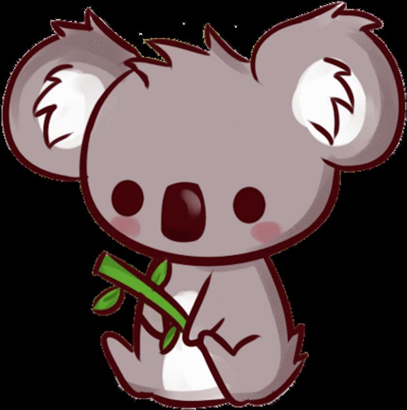Animal Kawaii Cute Koala Poster Sama Kawaii Cute Koala Drawing