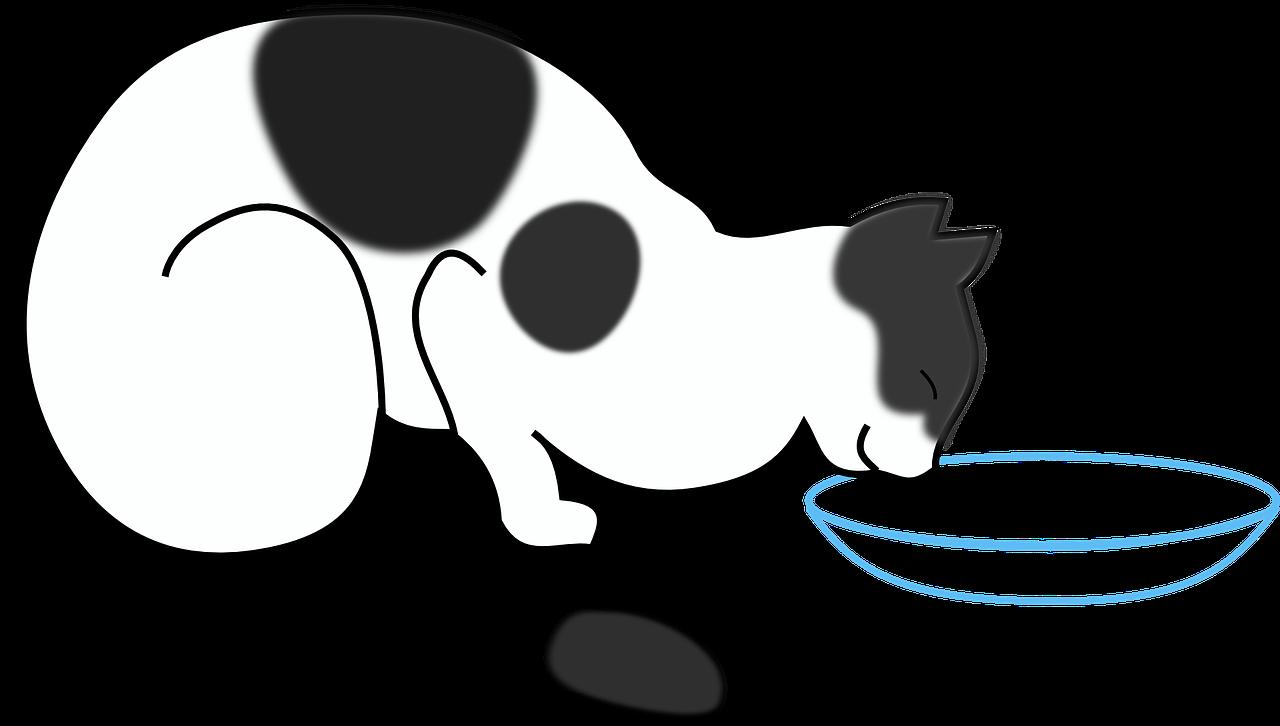 cat drinking milk gambar kucing hitam putih clipart full size clipart 381539 pinclipart cat drinking milk gambar kucing hitam
