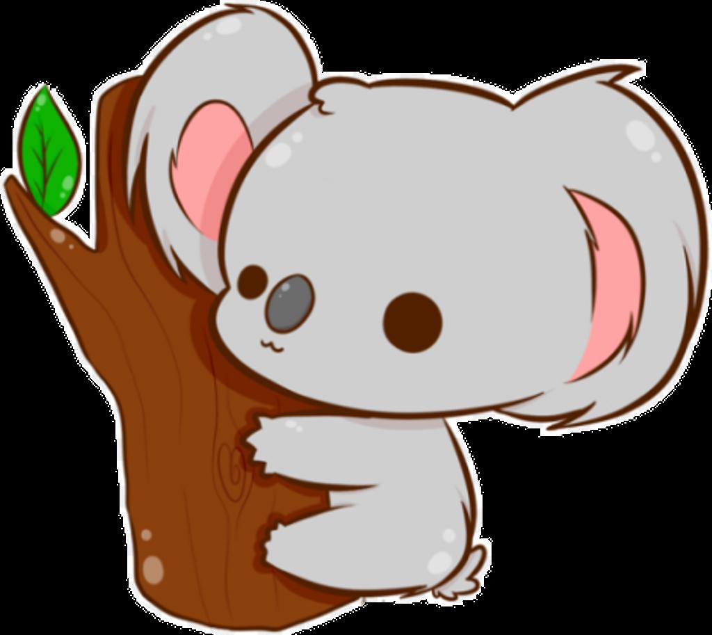 Chibi Animal Koala Cute Kawaii Kawaii Koala Drawing Clipart