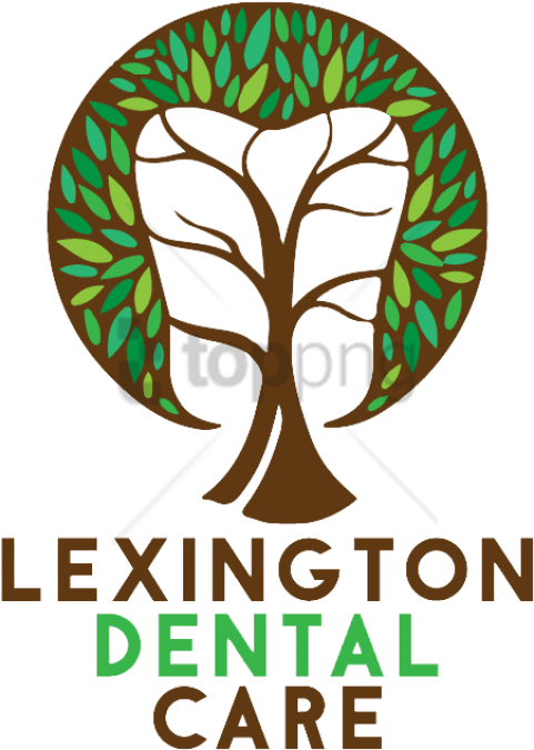 Deciduous Teeth Human Tooth Dentistry PNG, Clipart, Child, Deciduous Teeth,  Dental Braces, Dentist, Dentist Clipart Free
