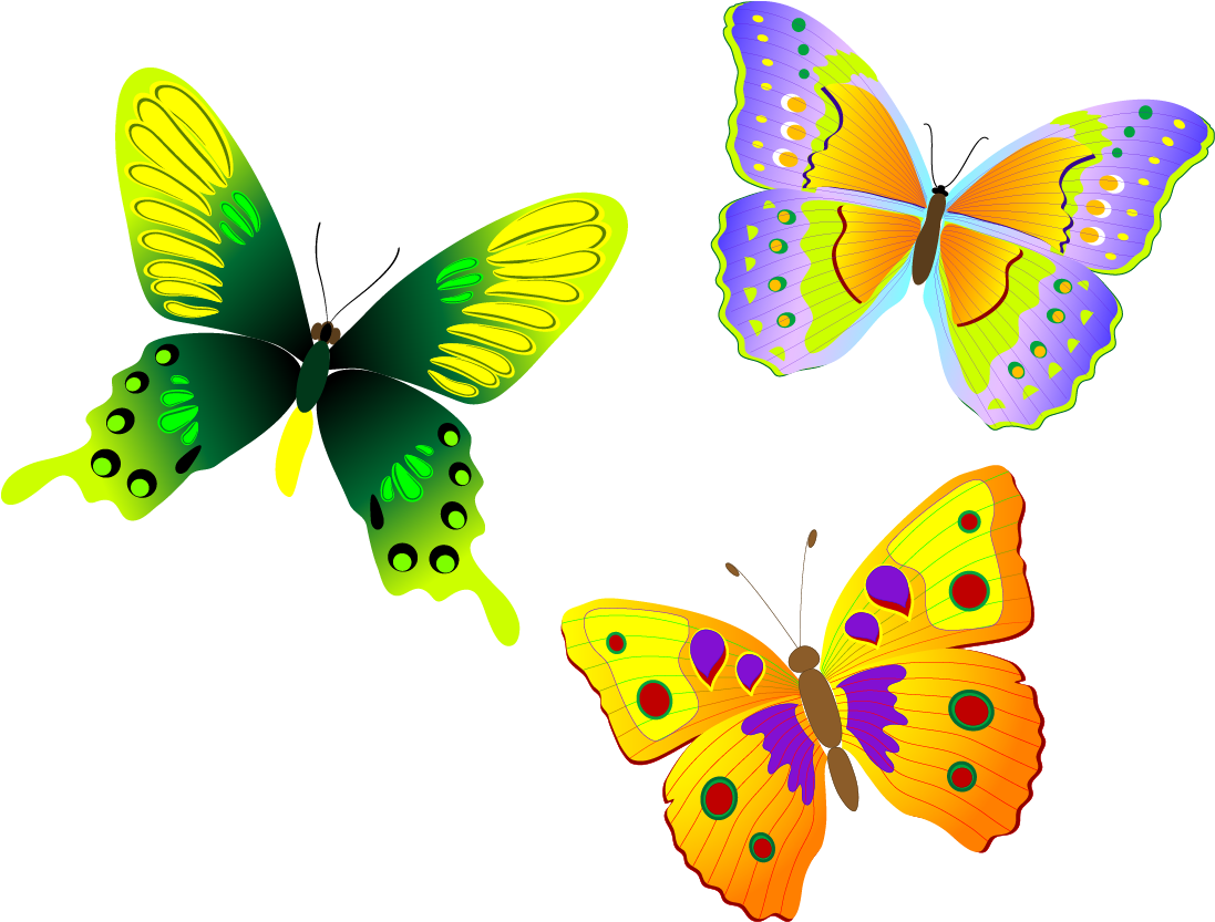 Free Yellow Butterfly Clipart, Download Free Clip Art, Free Clip Art on  Clipart Library
