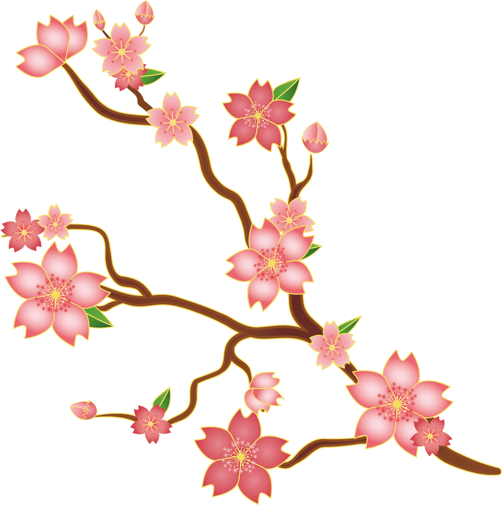 Svg Library Stock Cherry Blossoms Clipart Cerezo Vector