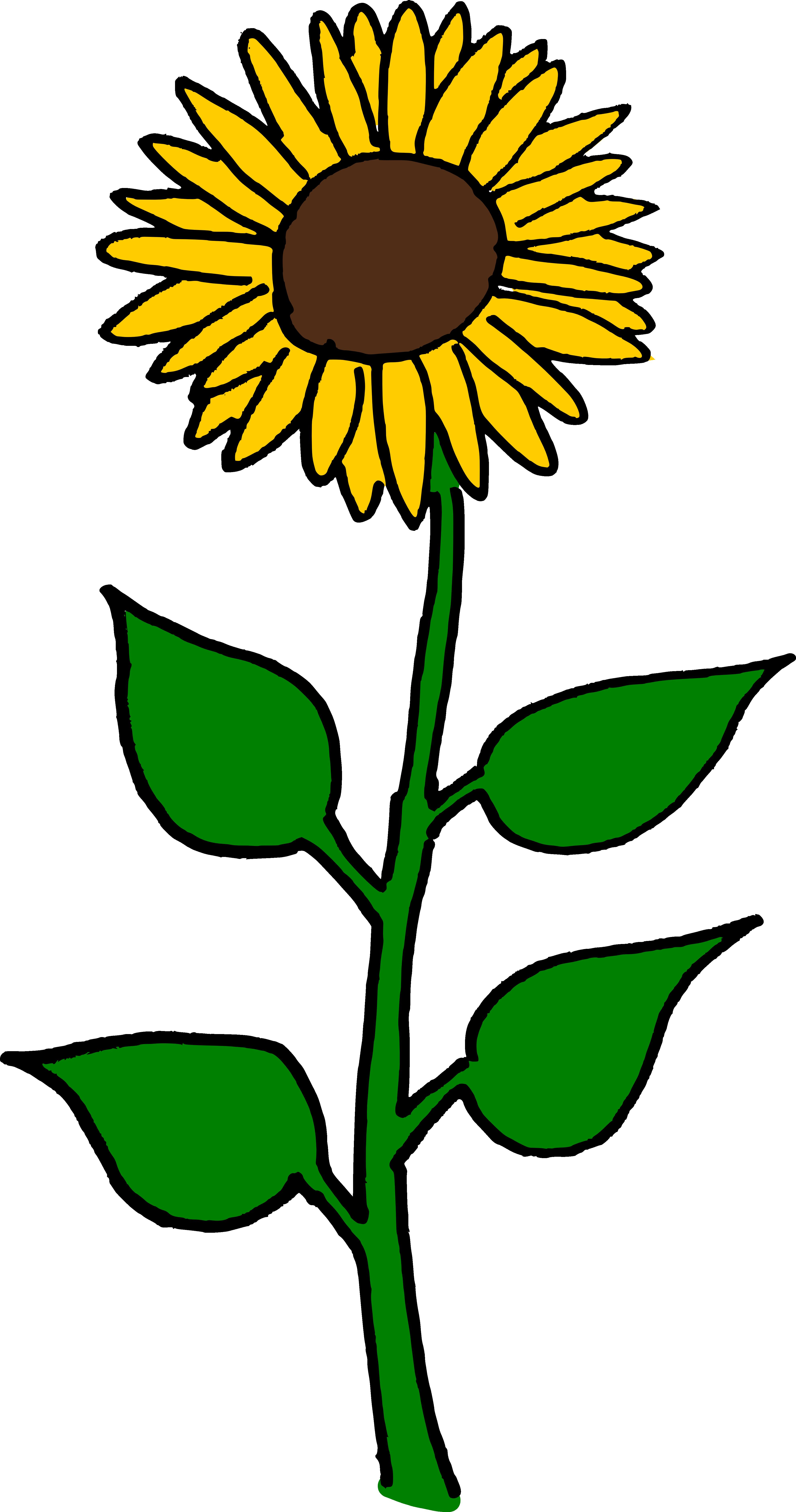Flower Clipart Sunflower - Sun Flowers Clip Art - Png ...