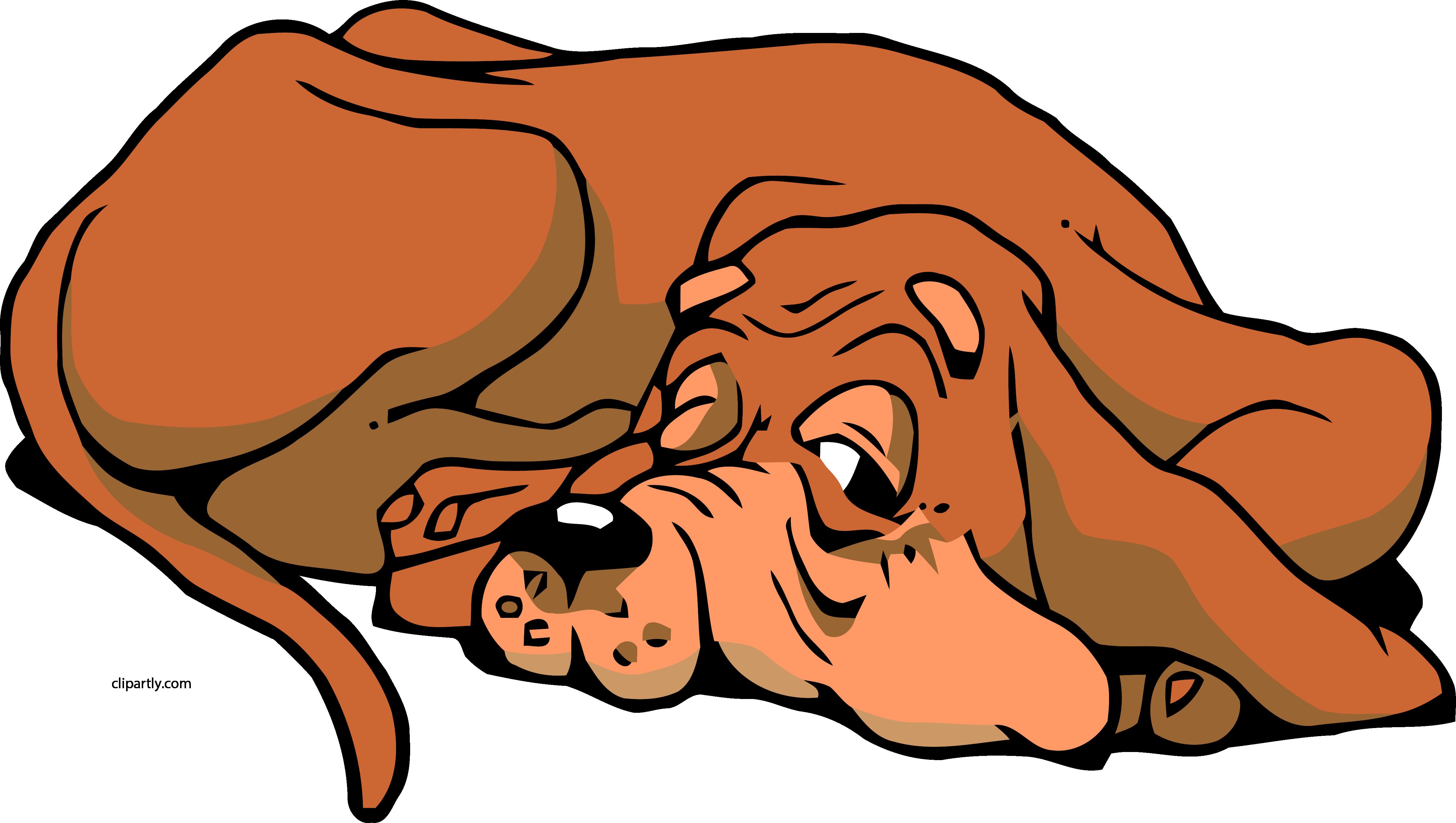 Картинки с анимацией собаки, днем