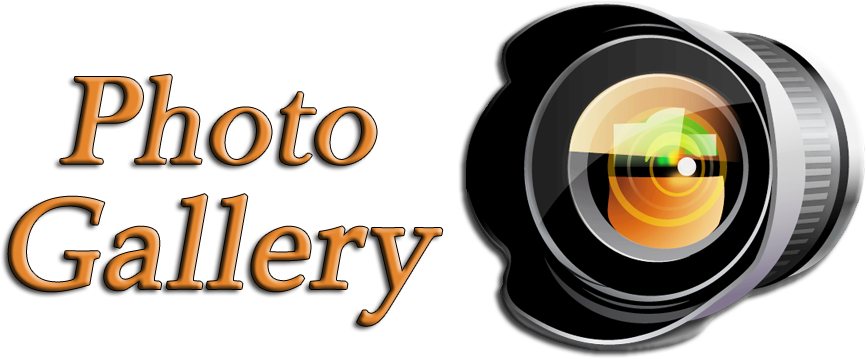 Photo Gallery1 Ak Photography Clipart Full Size Clipart 508016 Pinclipart