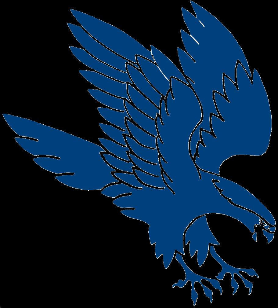 Falcons Png Logo - Falcon Clip Art Png Transparent Png ...
