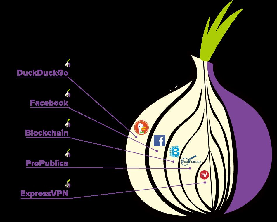 Onion darknet download гирда как удалить тор браузер с компьютера вход на гидру