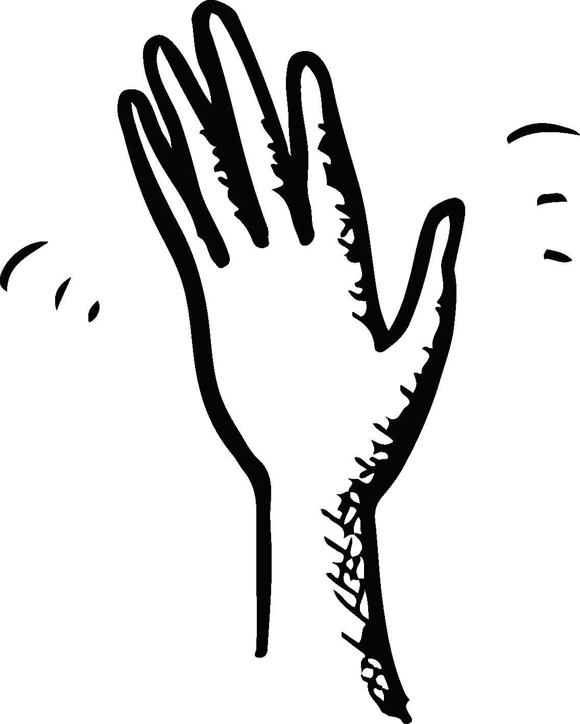 hand waving drawing - HD1136×1418