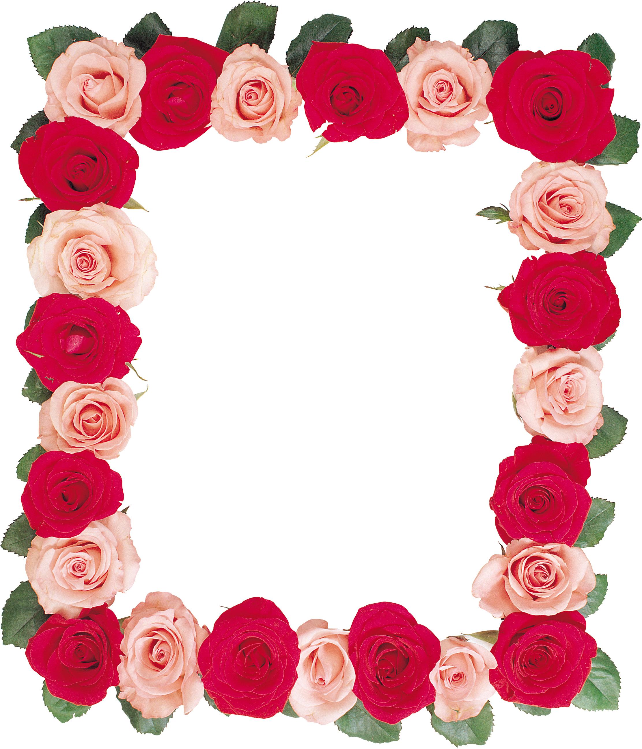 время рамка для фотографий с розами прекрасная