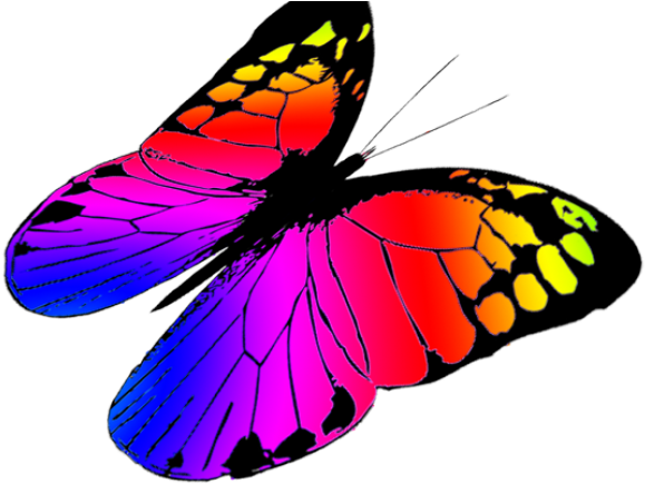 Monarch Butterfly Clipart Betterfly Clip Art Png Download Full Size Clipart 5615363 Pinclipart