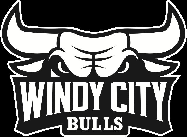 Bulls Drawing At Getdrawings Com Free For Logo Chicago Bulls Png