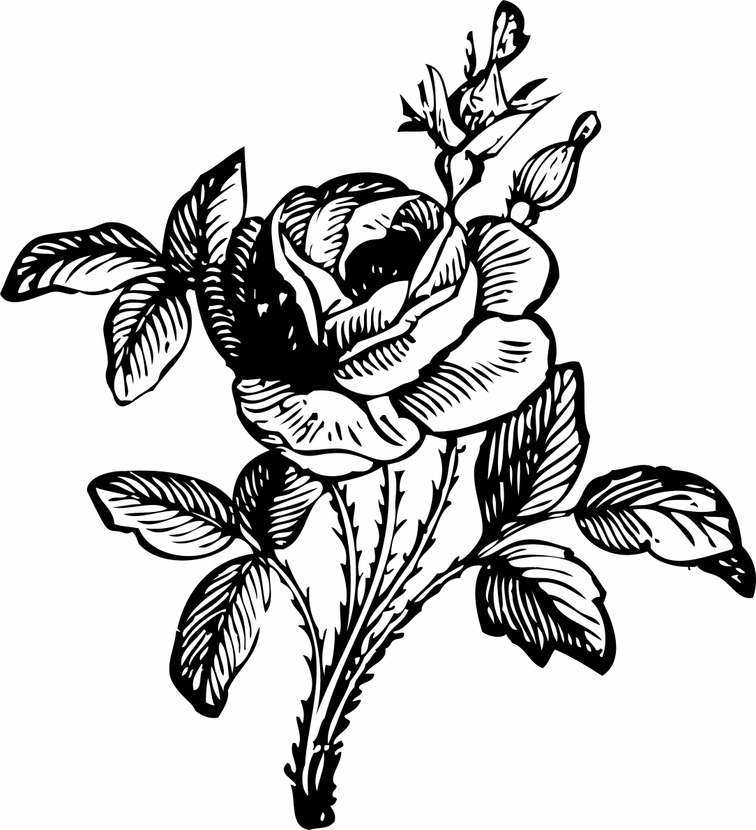 How To Draw A Simple Rose Bush Bunch Of Flowers - Flower Bouquet Clip Art Black And White - Png ...