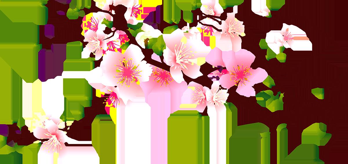 Cherry Blossom Peach Clip Art Decoration - Cherry Blossoms ...