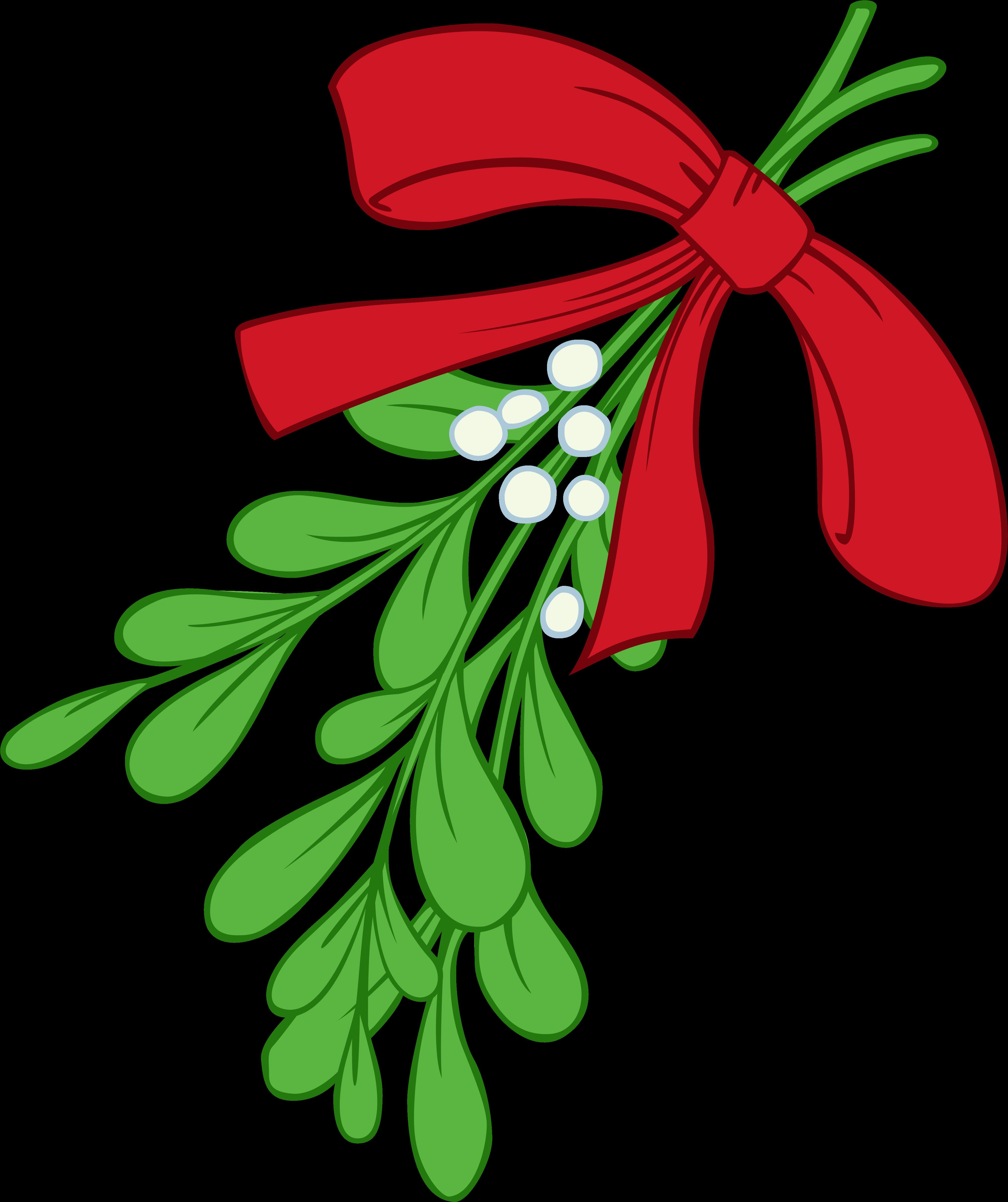 Mistletoe Clipart Ilration 72107 By Inkgraphics - Transparent Background Mistletoe Clipart - Png ...