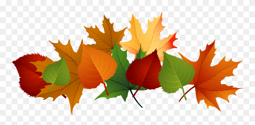 Pile Of Leaves Drawing At Getdrawings Fall Leaves Transparent Background Clipart 1008 Pinclipart