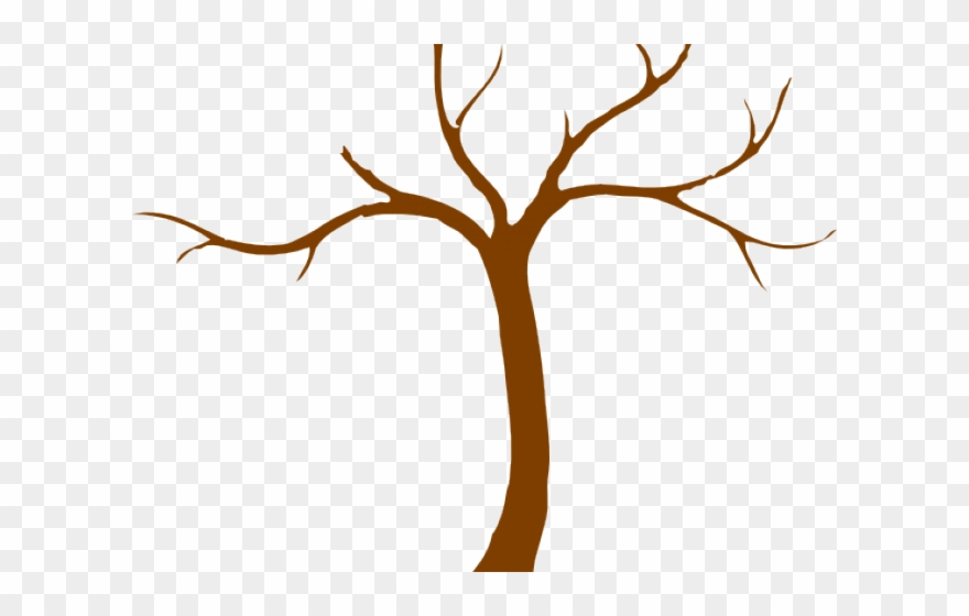 Roots Clipart Tree Trunk Png Transpa