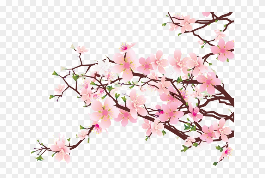 Cherry Tree Picture Clip Art