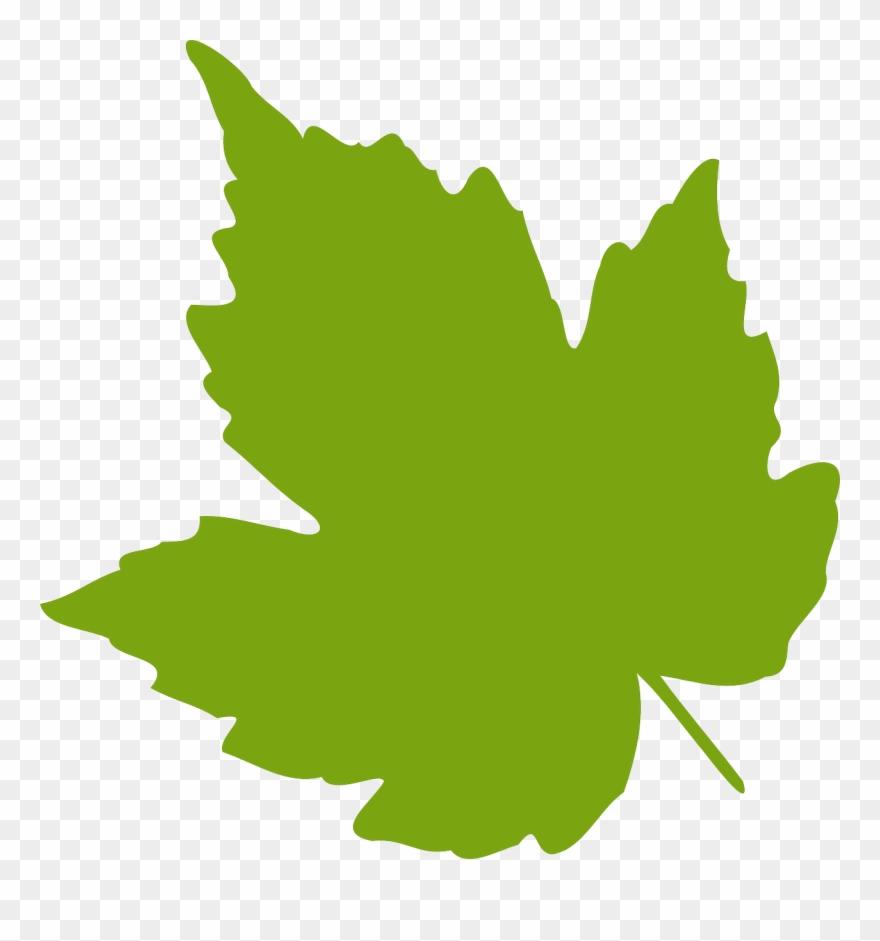 Clipart Png File Tag List, Clip Arts Svg File - Grape Leaf Clipart