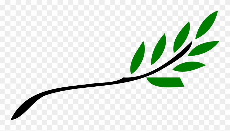 Clip Art Tree Branches Black And White Olive Branch Petition Png