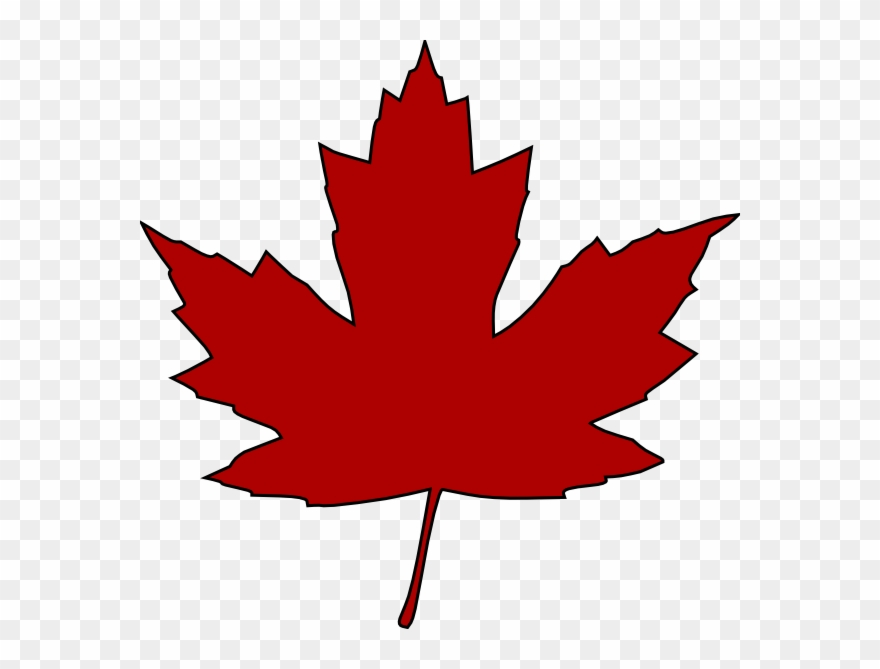 Red maple leaf clipart. Free download transparent .PNG | Creazilla