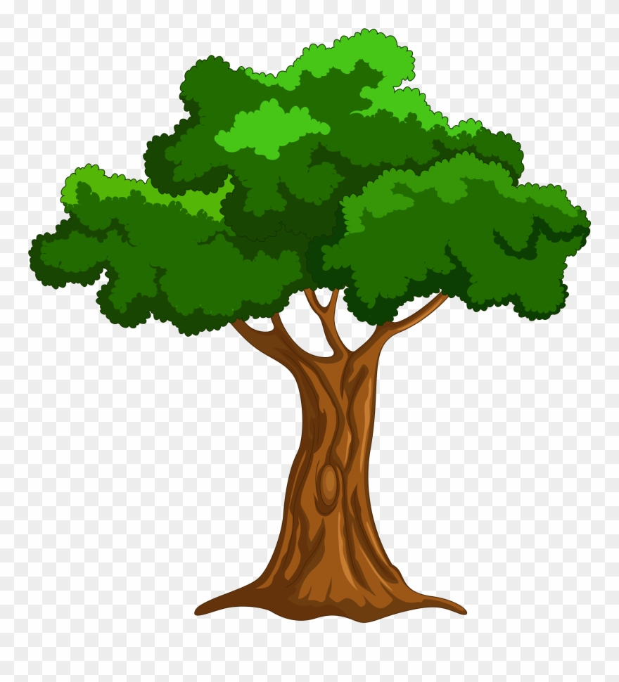 Cartoon Tree Png Clip Art Big Book Of Beginner Reading Stories By Naomi Bradley Transparent Png 321 Pinclipart When designing a new logo you can be inspired by the visual logos found here. cartoon tree png clip art big book of