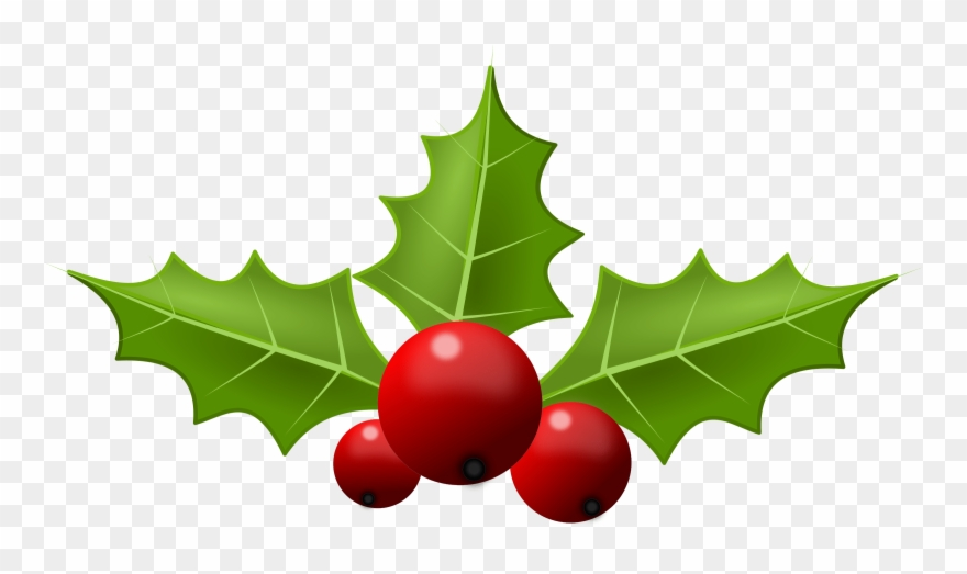 Christmas Holly Clipart Png.Free Holly Clipart Public Domain Christmas Clip Art Holly