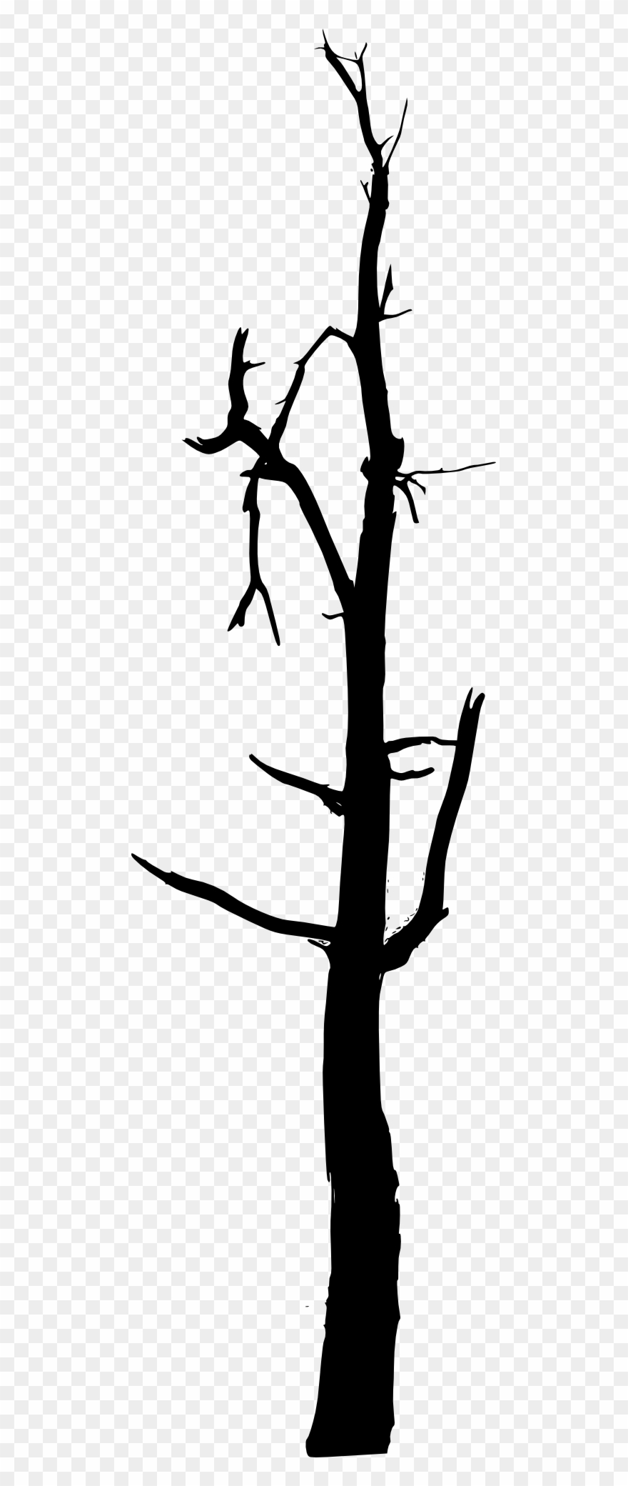 Svg Library Bare Tree Clipart Black And White Simple Bare Tree