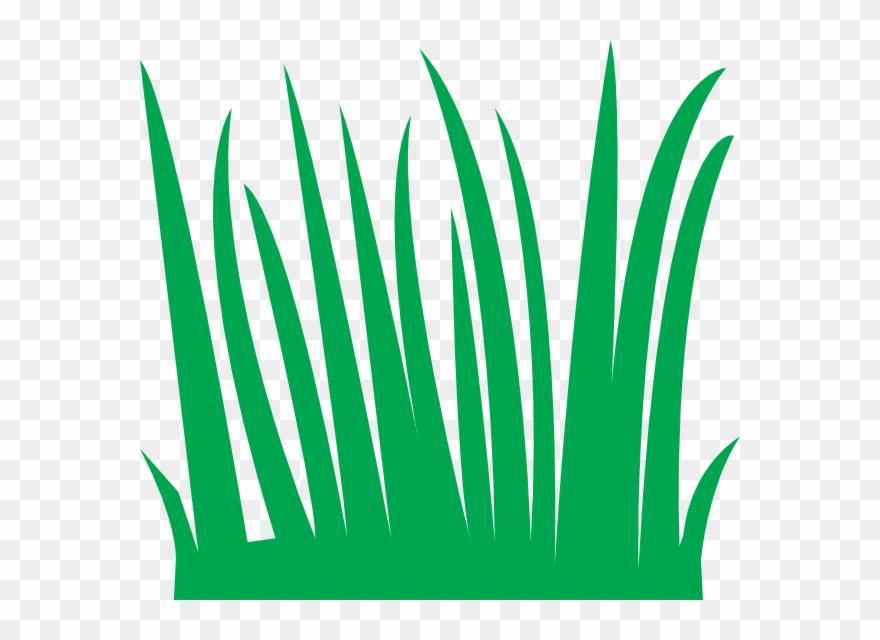 Grass cartoon. Clipart blades of png