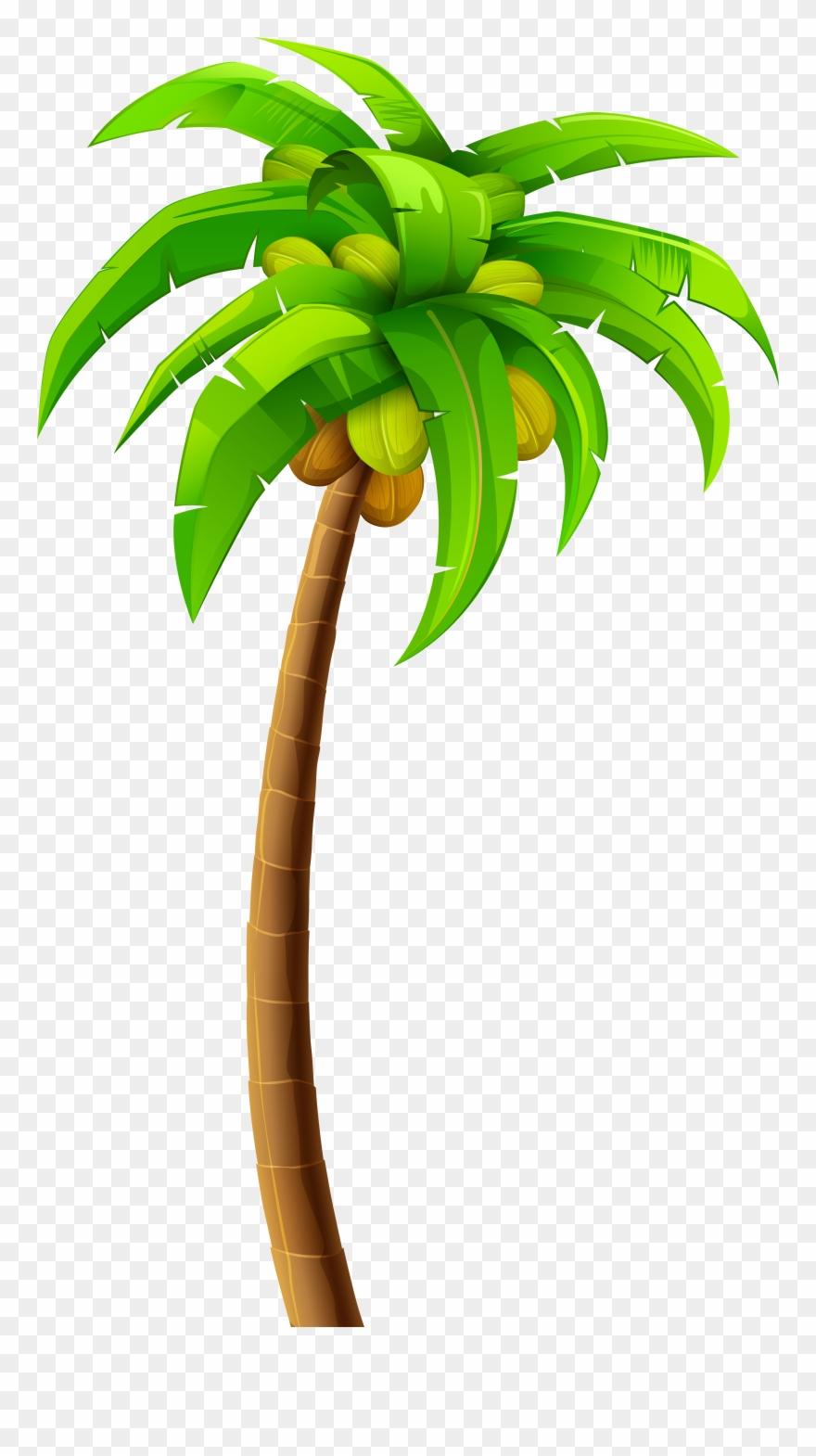 Palm Png Clip Art Palm Tree Clipart Png Transparent Png 415
