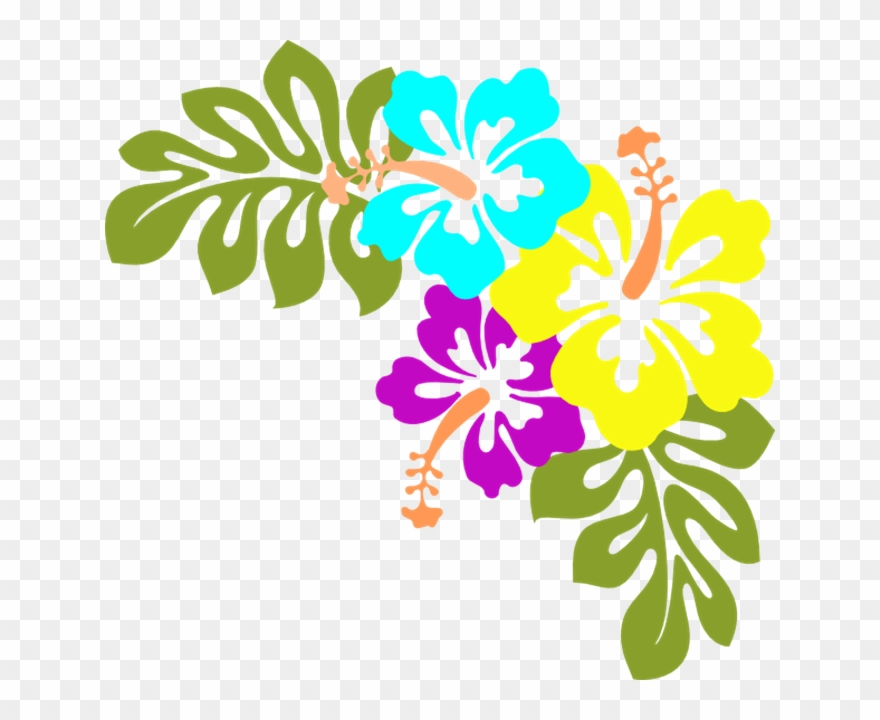 Luau Clipart Flower Free Hawaiian Collection Hibiscus Hawaiian