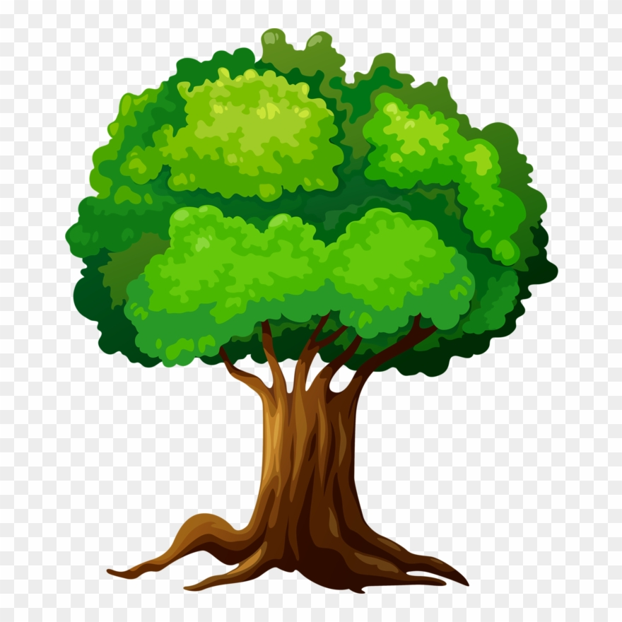 Fotki Tree Clipart Forest Theme Tree Leaves Tree Tree Vector