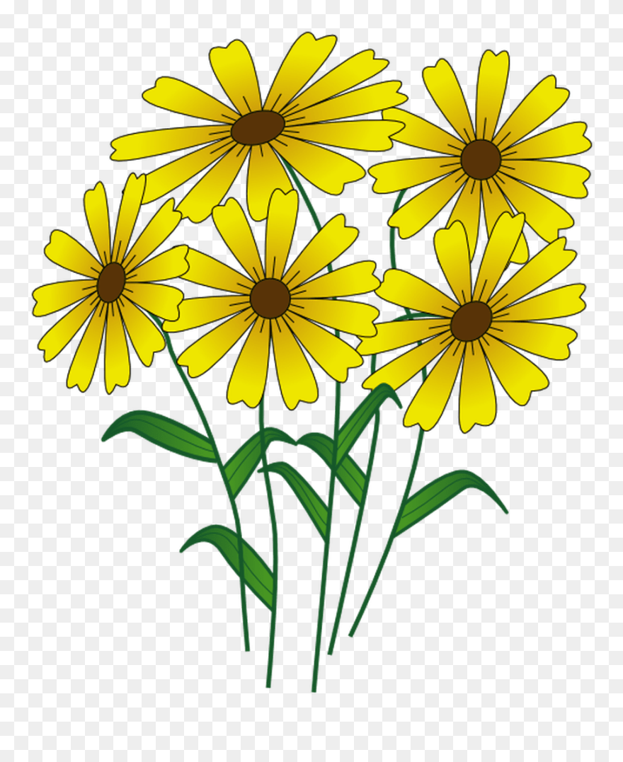9 Places To Find Free Summer Clip Art August Flowers Clip Art